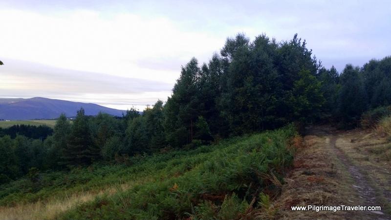 The Climbing Country Path, near Peñafonte, Asturias. Spain