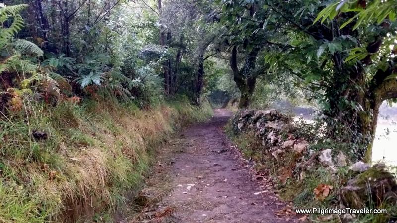 Deeper into the Countryside, Asturias, Spain