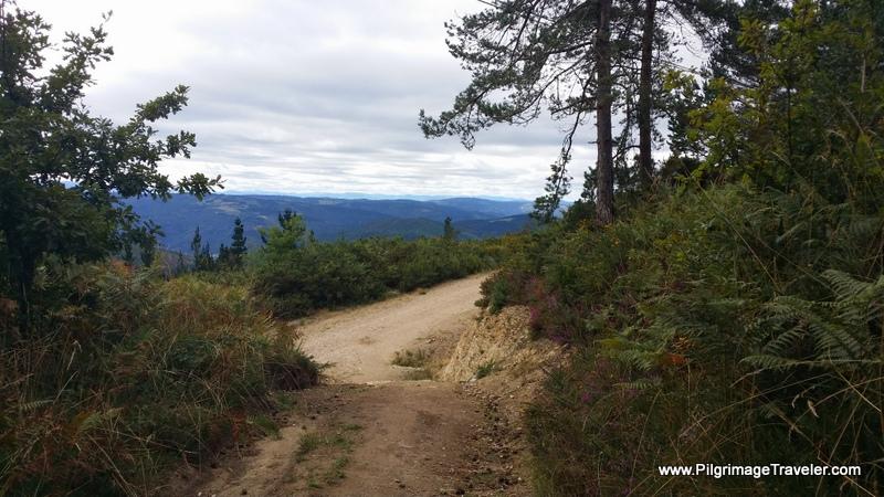 Onward on the Primitive Way