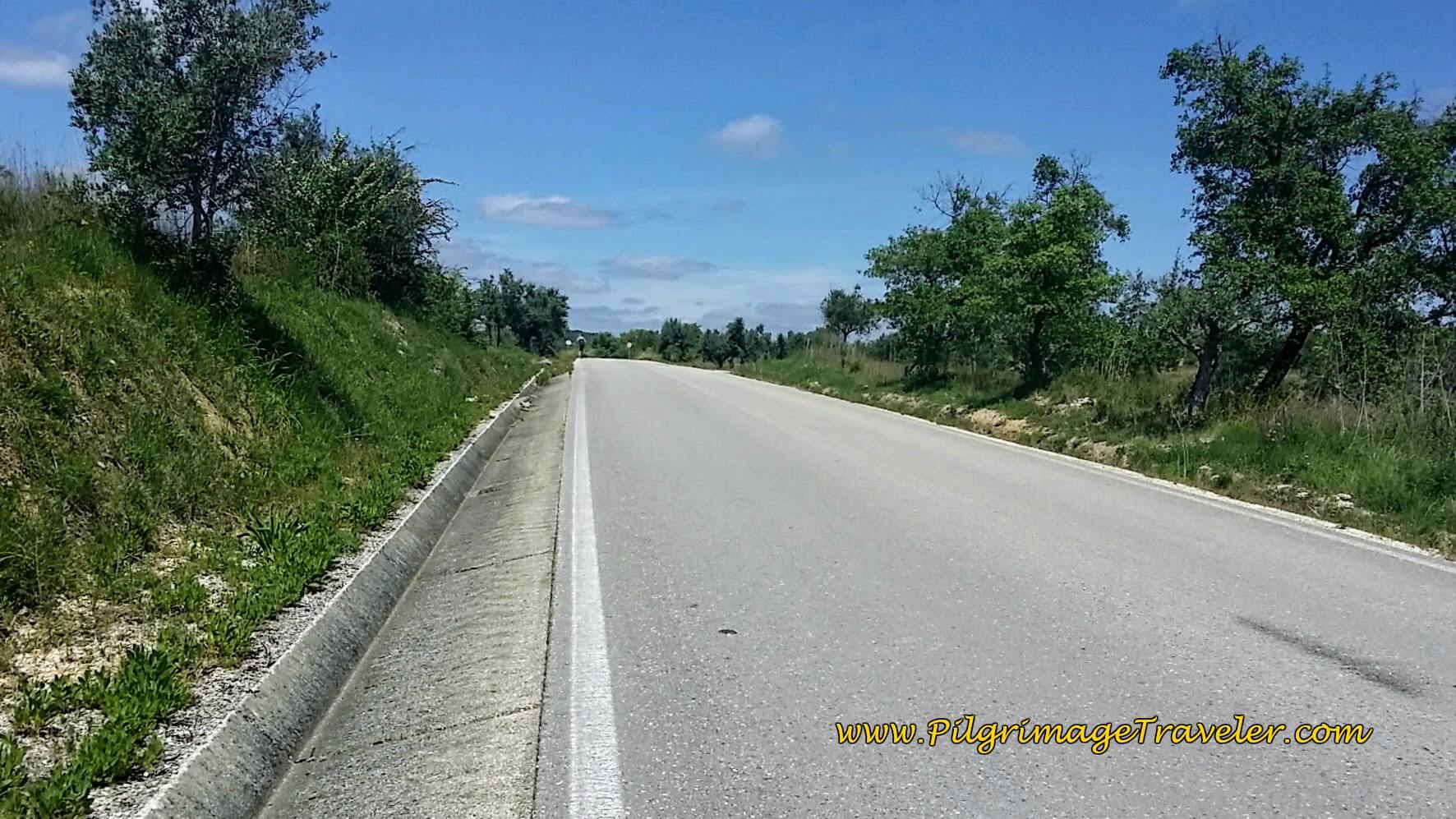 Walking on the Shoulder of the N348 towards Cortiça, Portugal