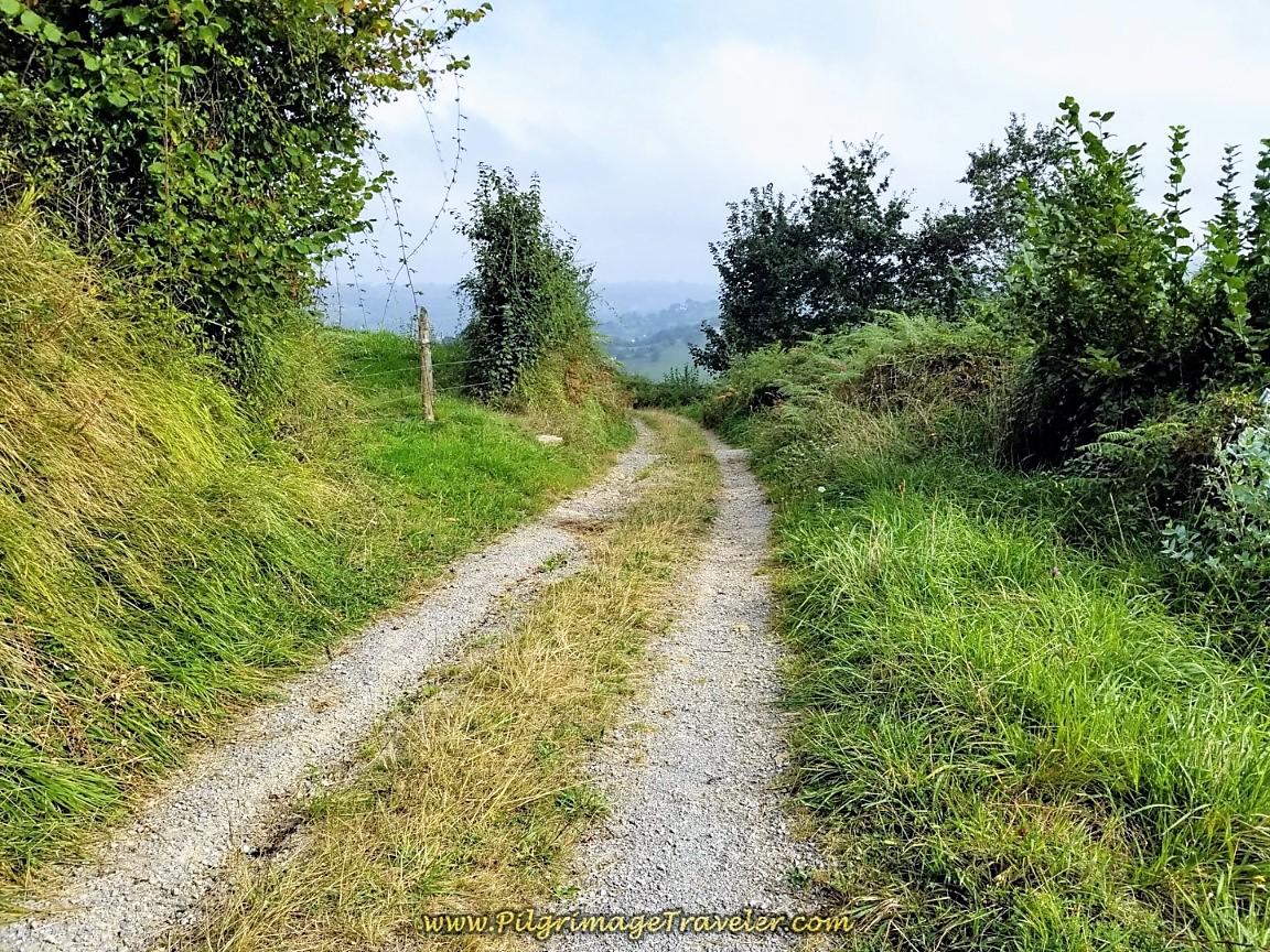 Lane Towards San Miguel de la Pereda on day six of the Camino de San Salvador