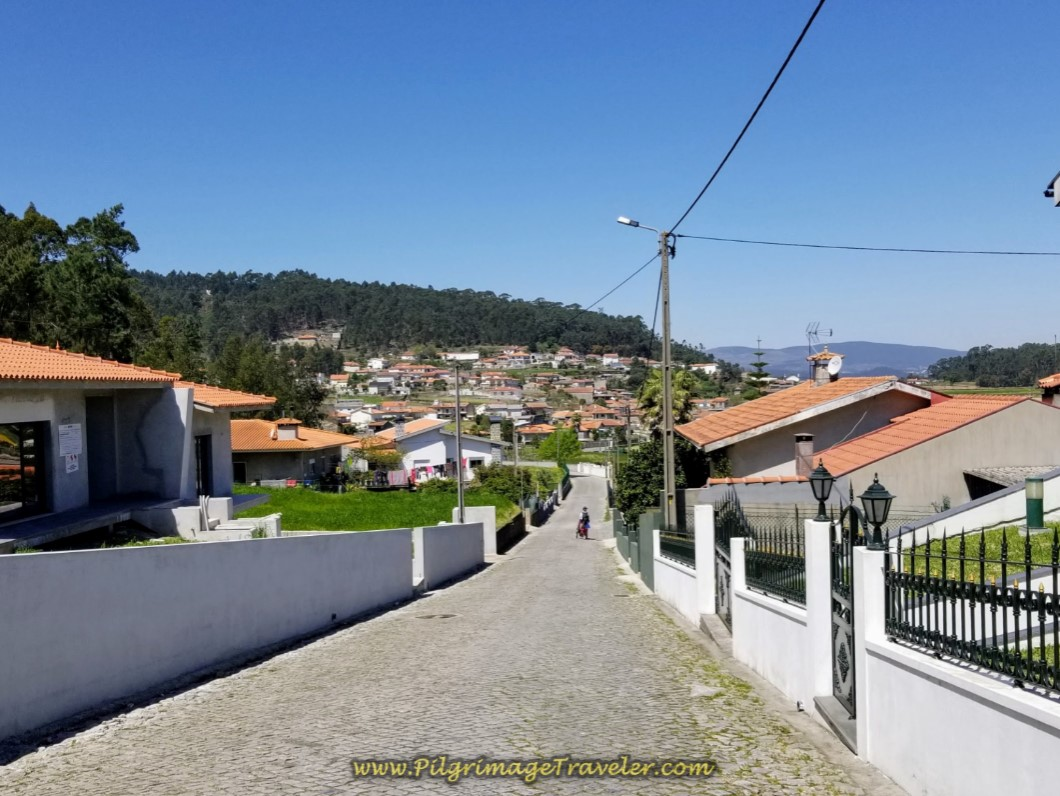 Toward Pereira on Cobblestone on day sixteen on the Central Route of the Portuguese Way