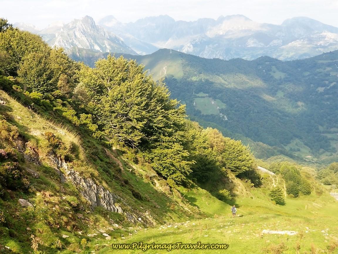 Lofty and Steep Camino del Salvador