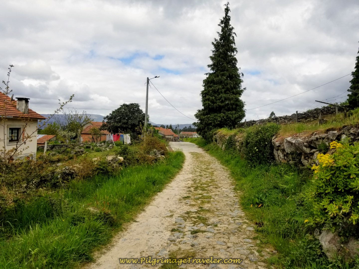 Cobblestone Replaces Dirt Road  on day eighteen on the Central Route of the Portuguese Camino