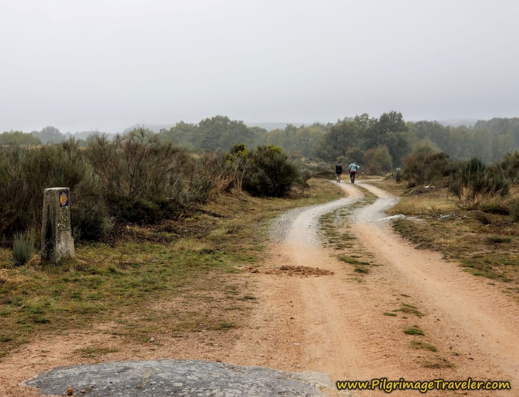 The Way Onward Towards O Cañizo