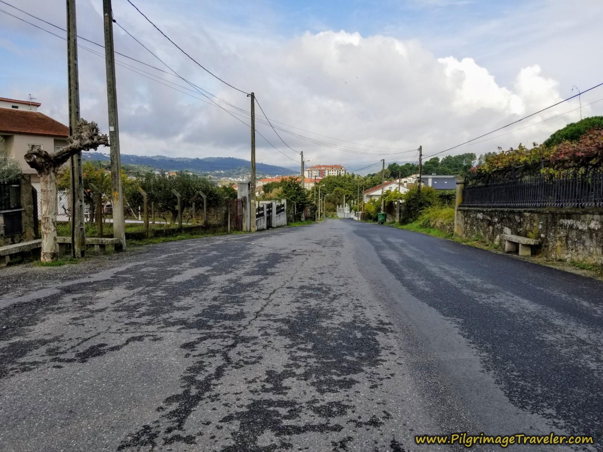 Northward Along the Rúa Verea Real de Seixalbo