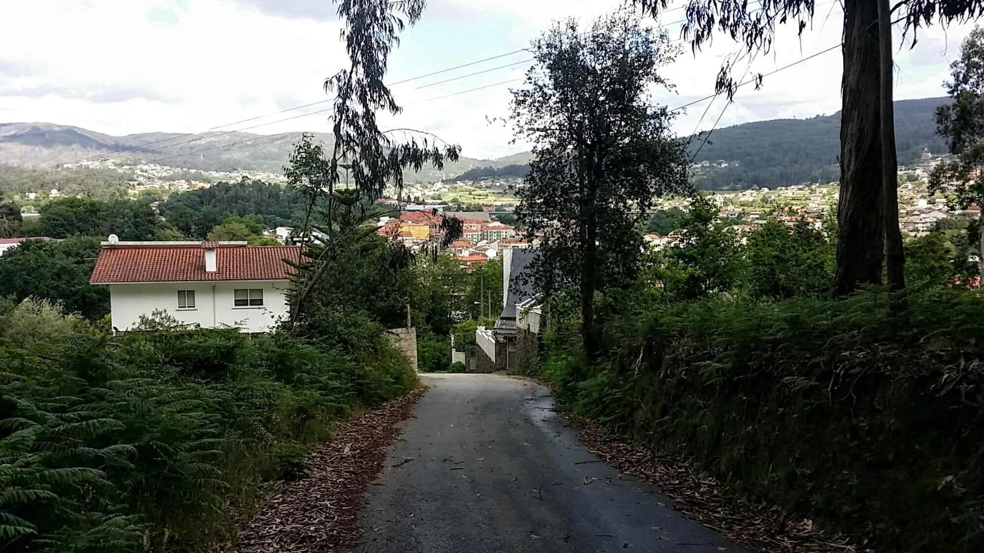 The narrow Camiño das Cardosas into Redondela on day twenty-one of the Camino Portugués