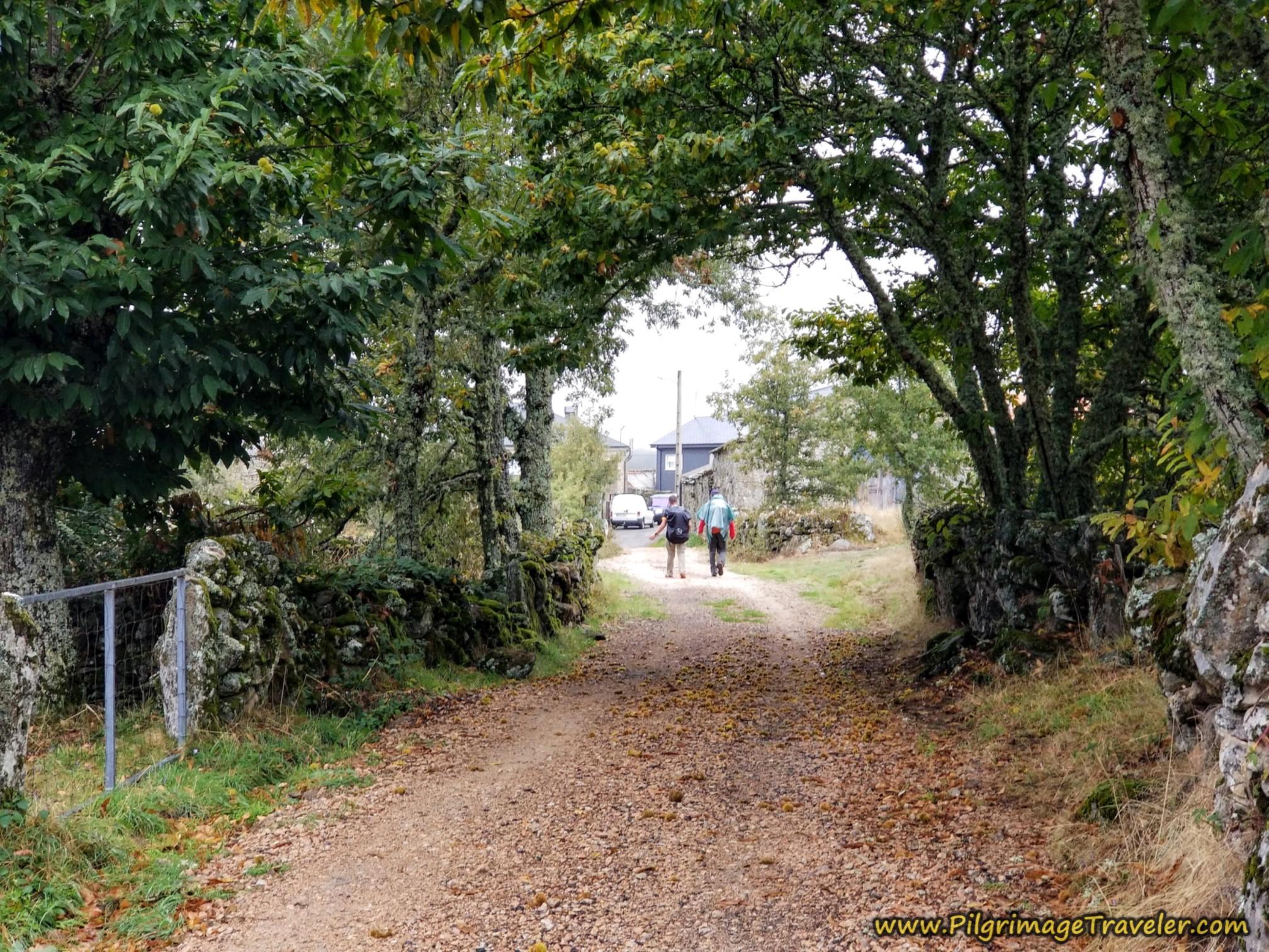 Entering O Cañizo, Camino Sanabrés, Lubián to A Gudiña