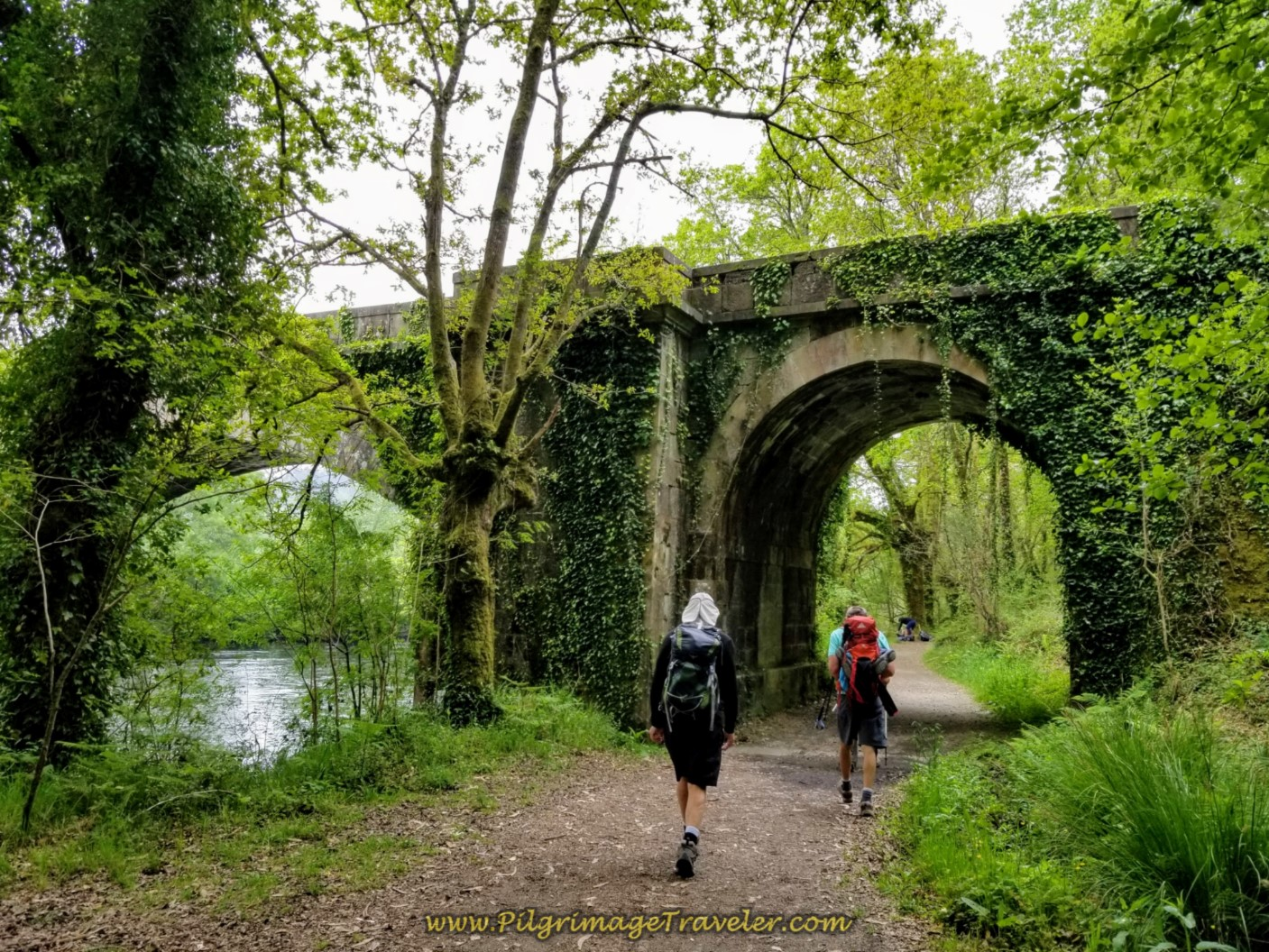 Walk Under the AC-448 by the Río Tambre on day one of the Camino Finisterre