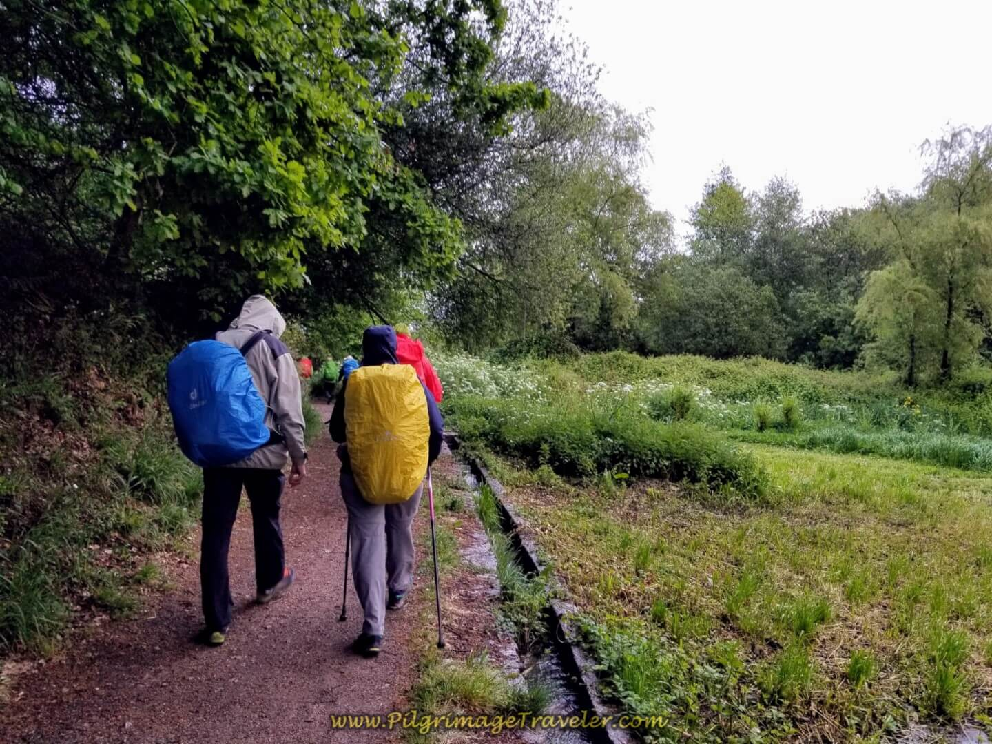 Join Farmer's Lane on day twenty on the central route of the Portuguese Camino