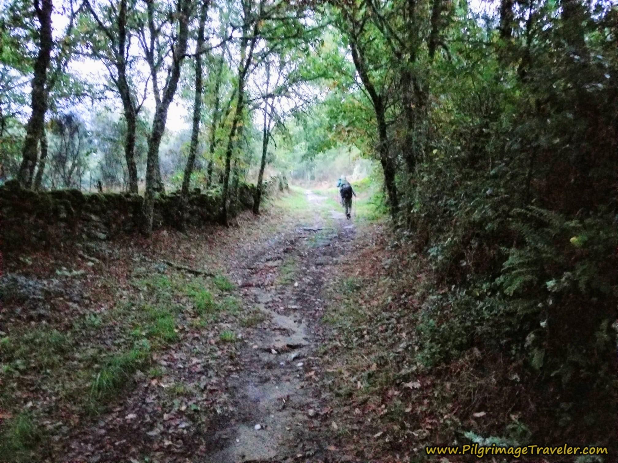 Parallel Lane Toward Outorelo, Camino Sanabrés, Xunqueira de Ambía to Ourense