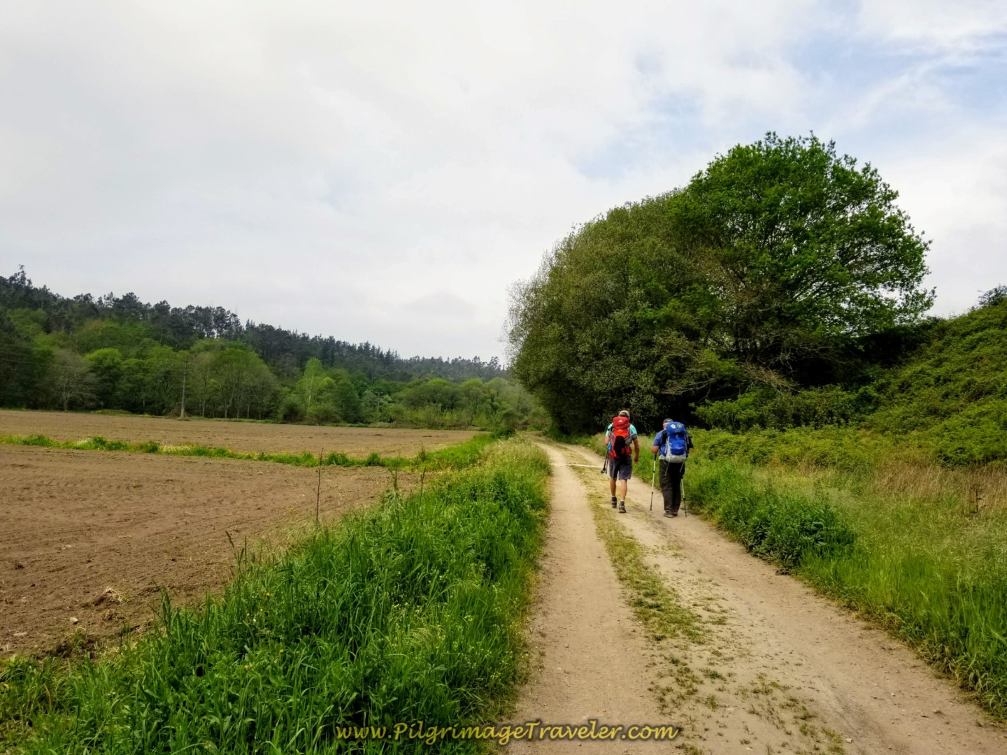 Walk on Lane Through Fields on day one of the Camino Finisterre