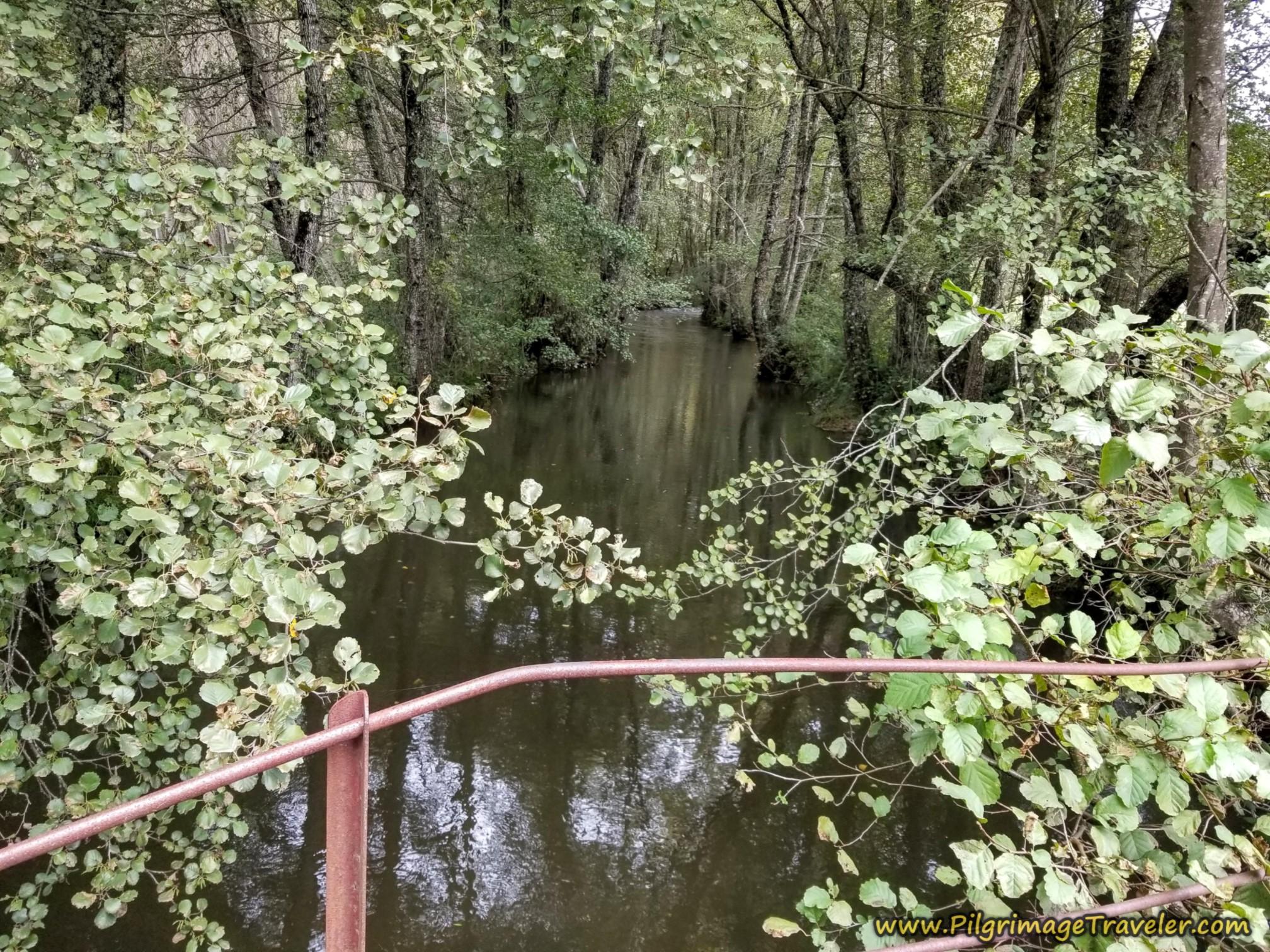 Cross the Río Cereixo