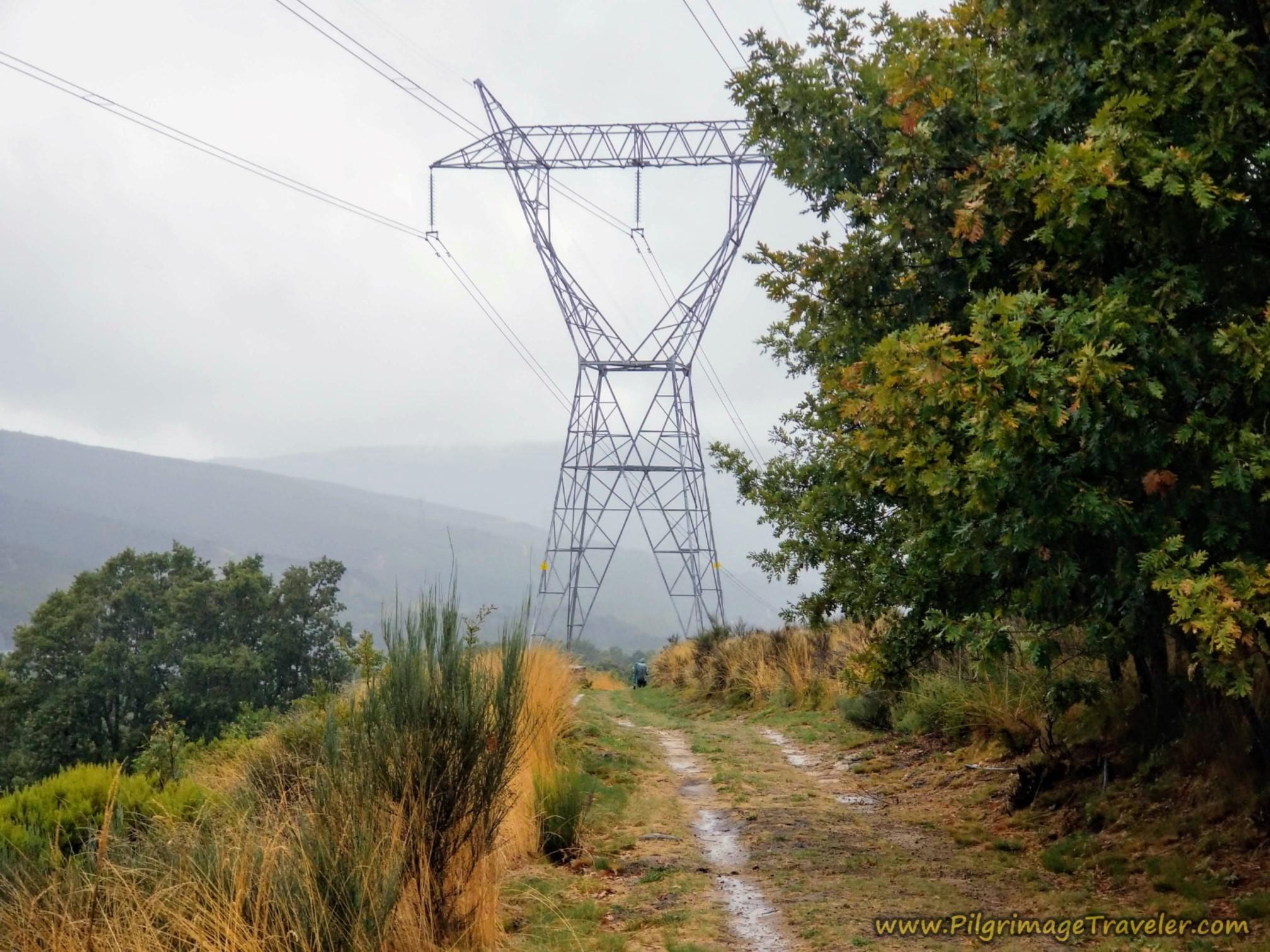 Walk Under Powerline