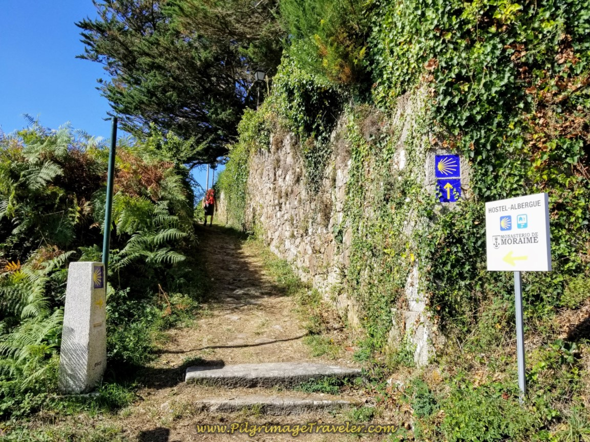 Cross AC-440 Here and Continue Straight on Path on day three of the Camino Finisterre to Muxía