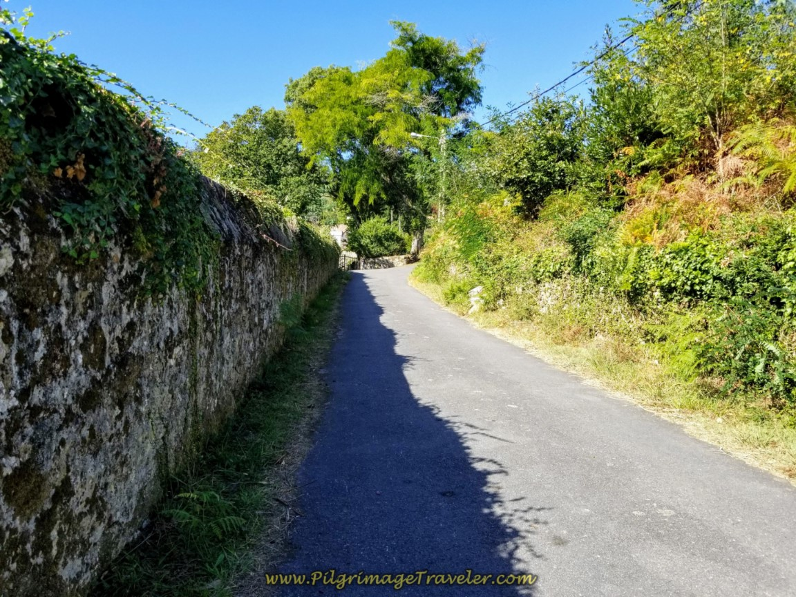 Walled Road Toward Chorente on day three of the Camino Finisterre to Muxía