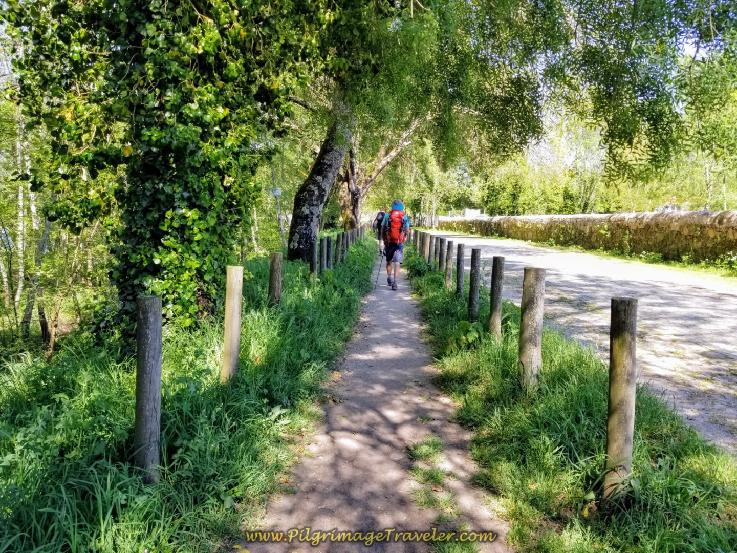 Camino Path Along the Lima River, entering Ponte de Lima, on day seventeen on the Central Route of the Portuguese Camino