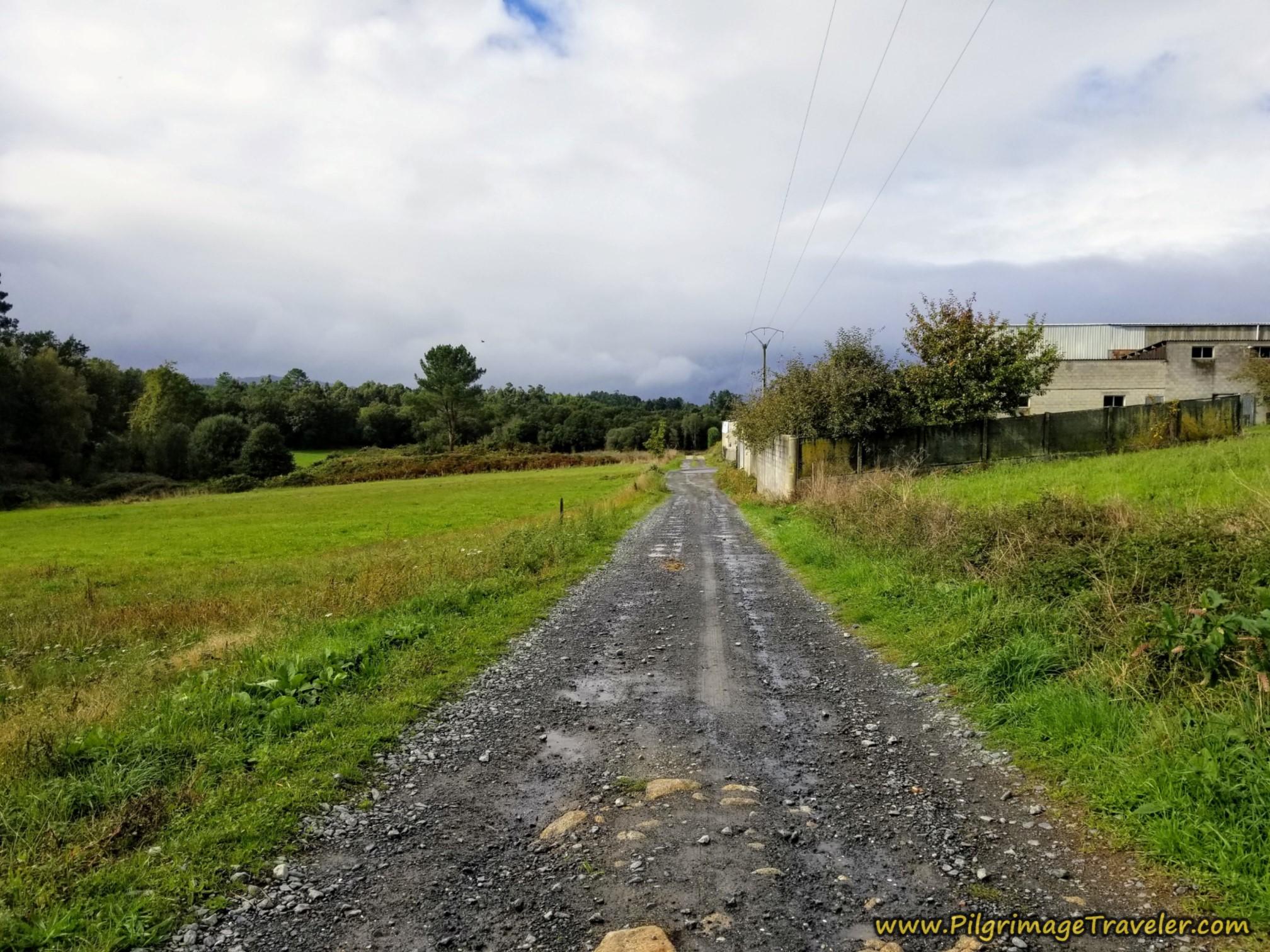 Continue Down Scrapyard Lane