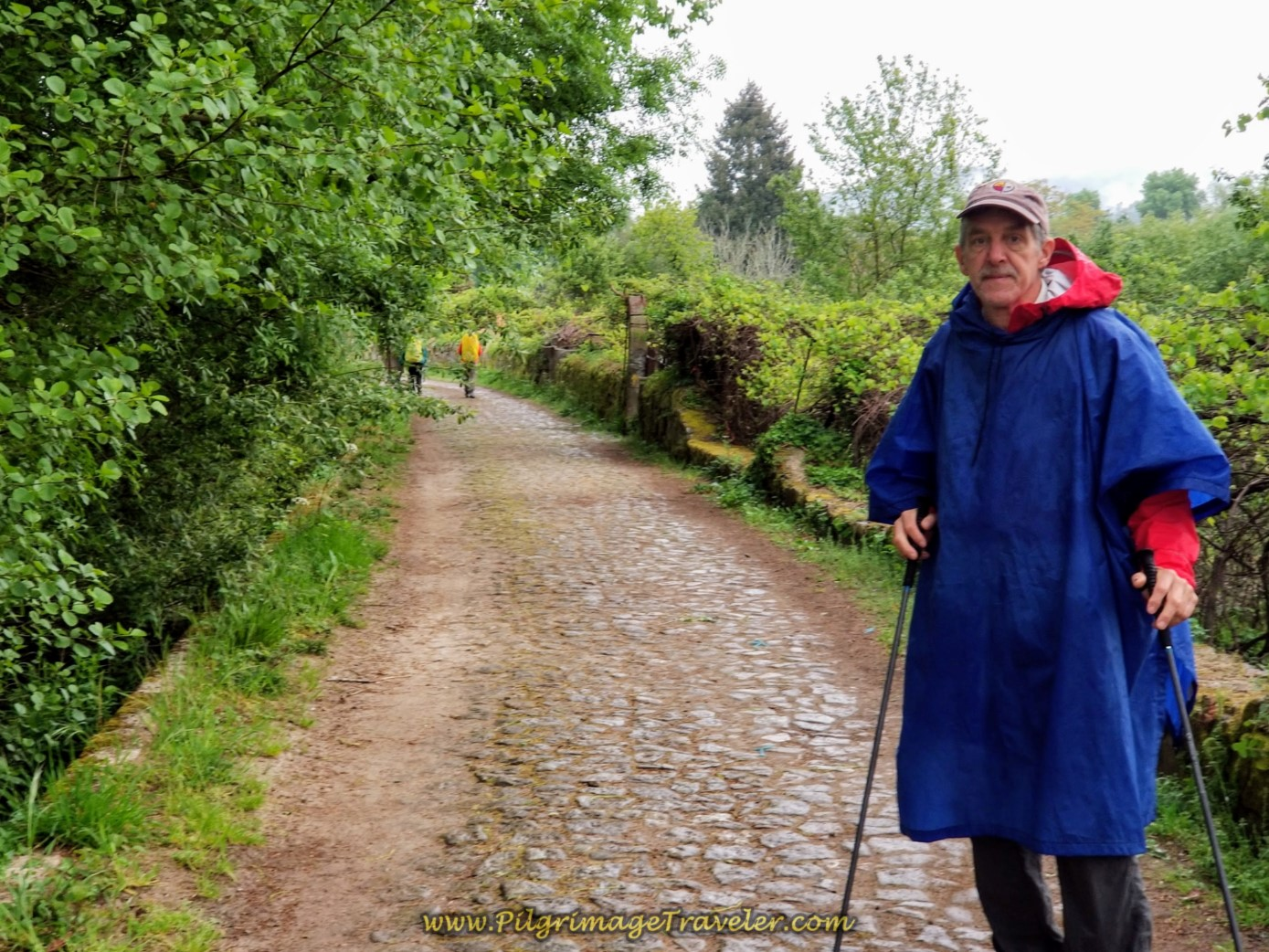 Turn Onto Cobblestone Lane on day eighteen on the Central Route of the Portuguese Camino