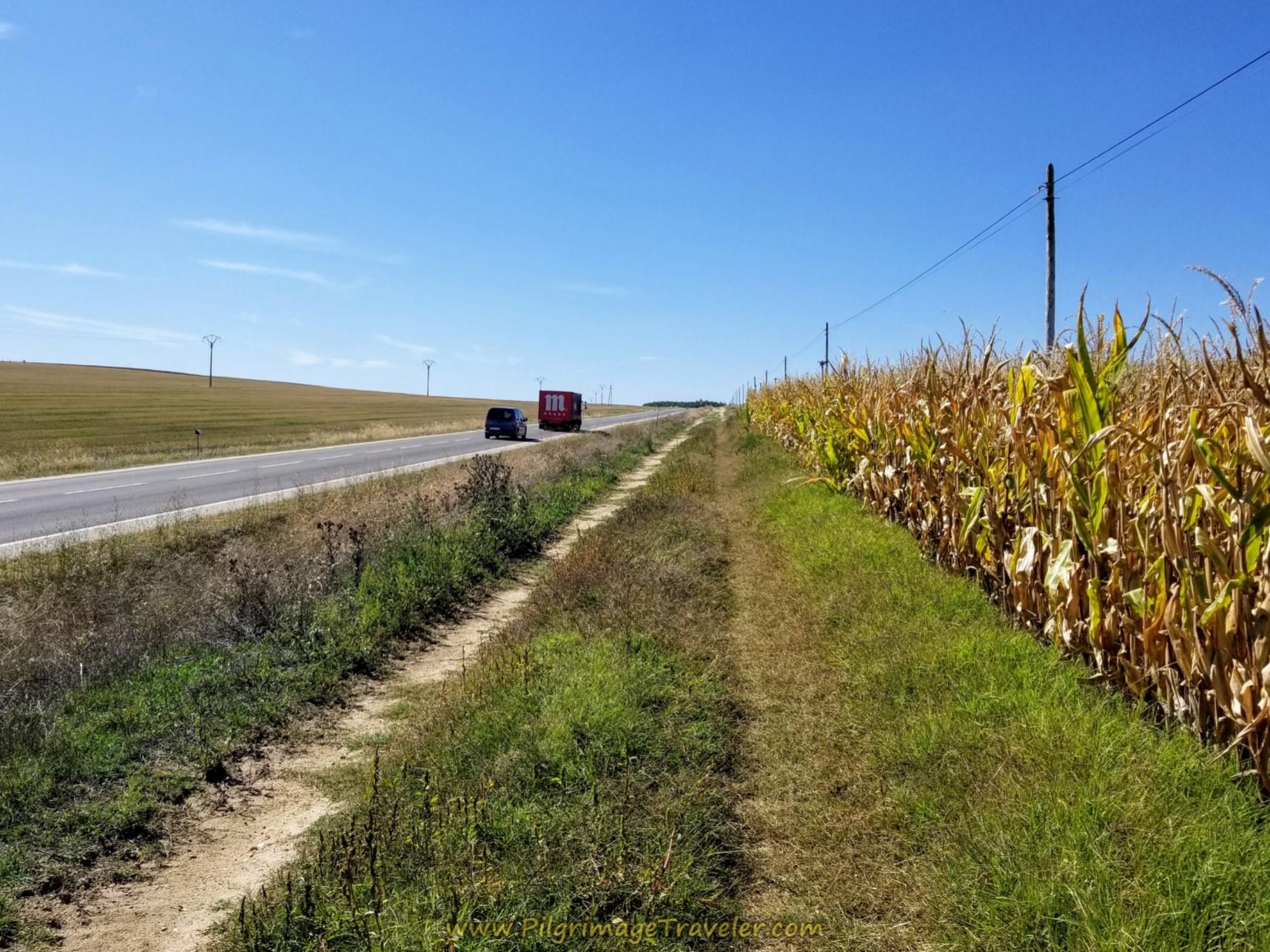 Sharing the Road to Alba de Tormes