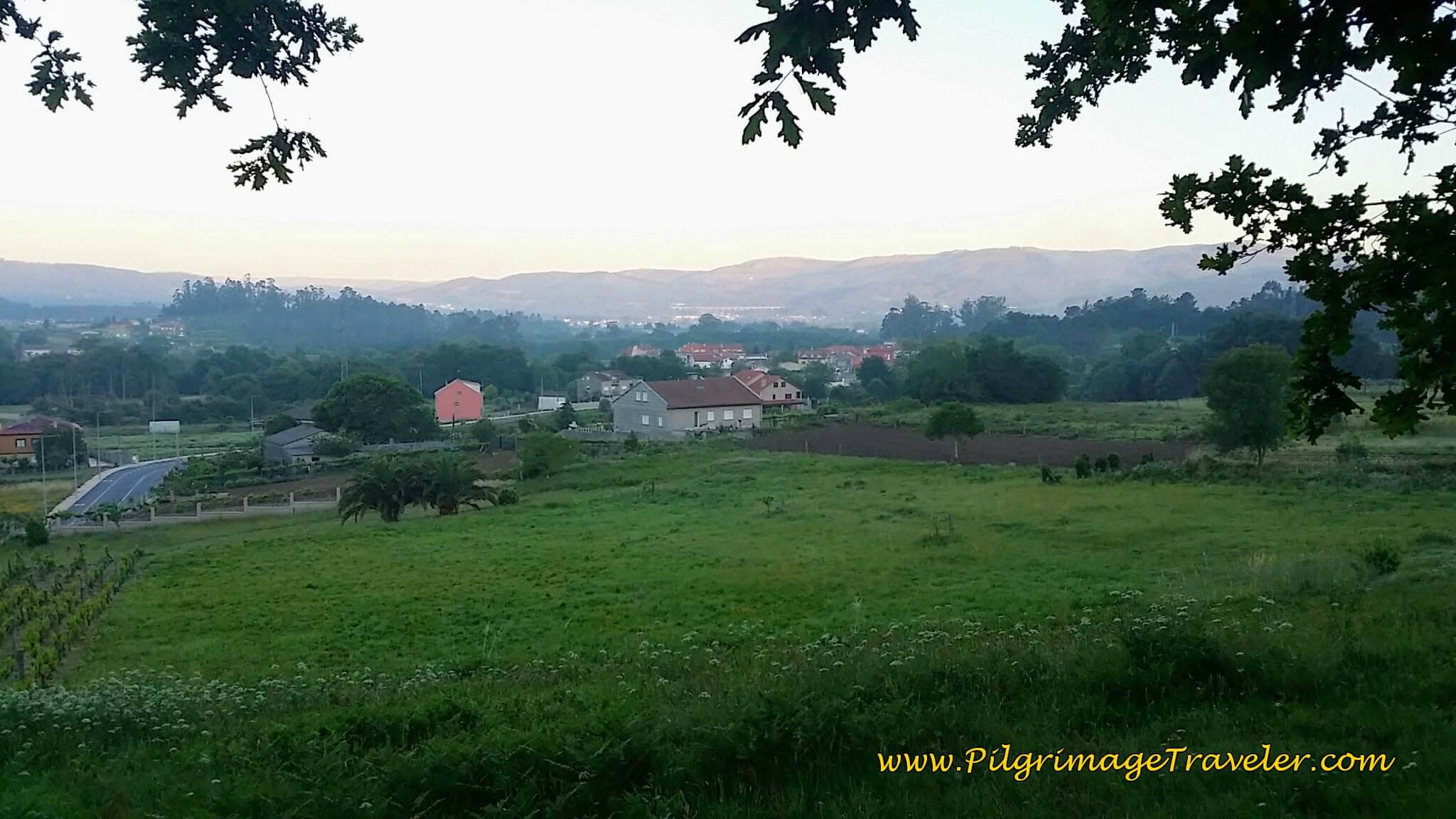 Countryside View in Early Morning Light on Day Twenty-Four, Camino Portugués