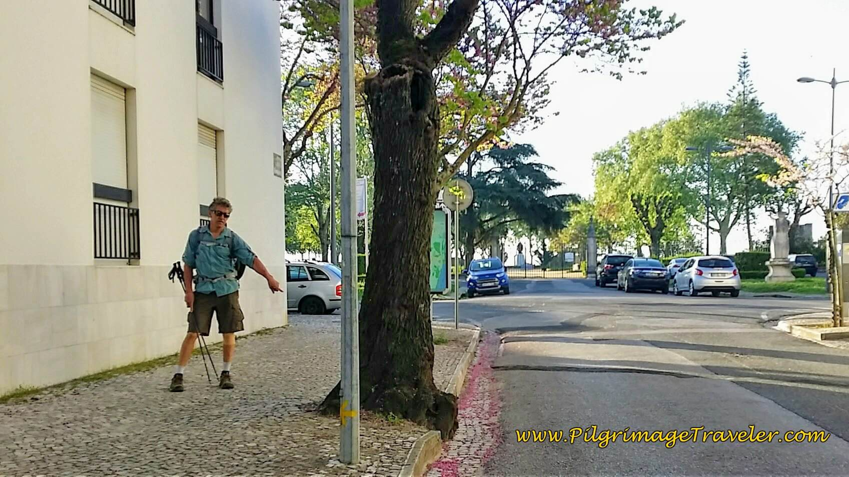 Small Yellow Arrow on Pole, Just Before Portas do Sol, Santarém, Portugal