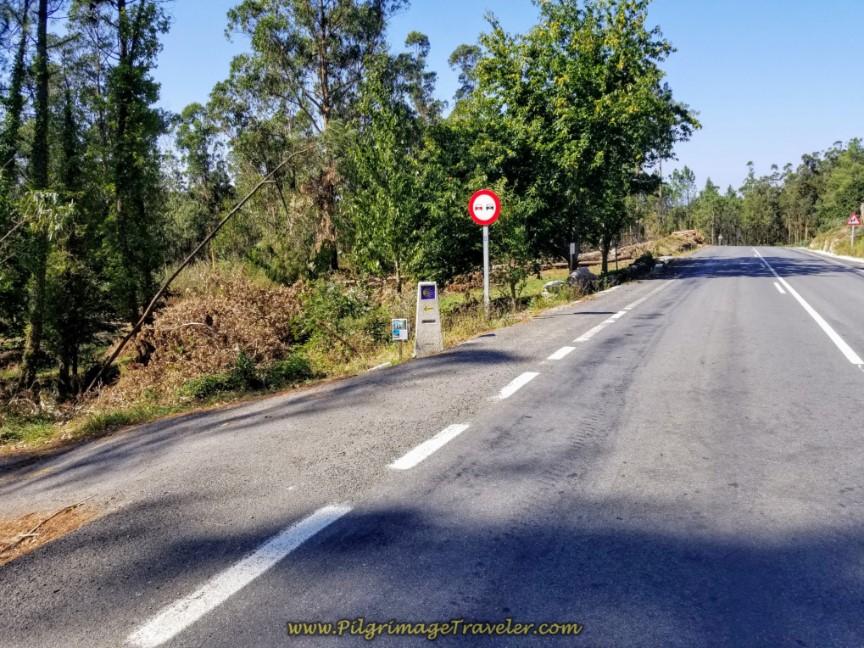 Turn Left Onto Road Towards As Carizas