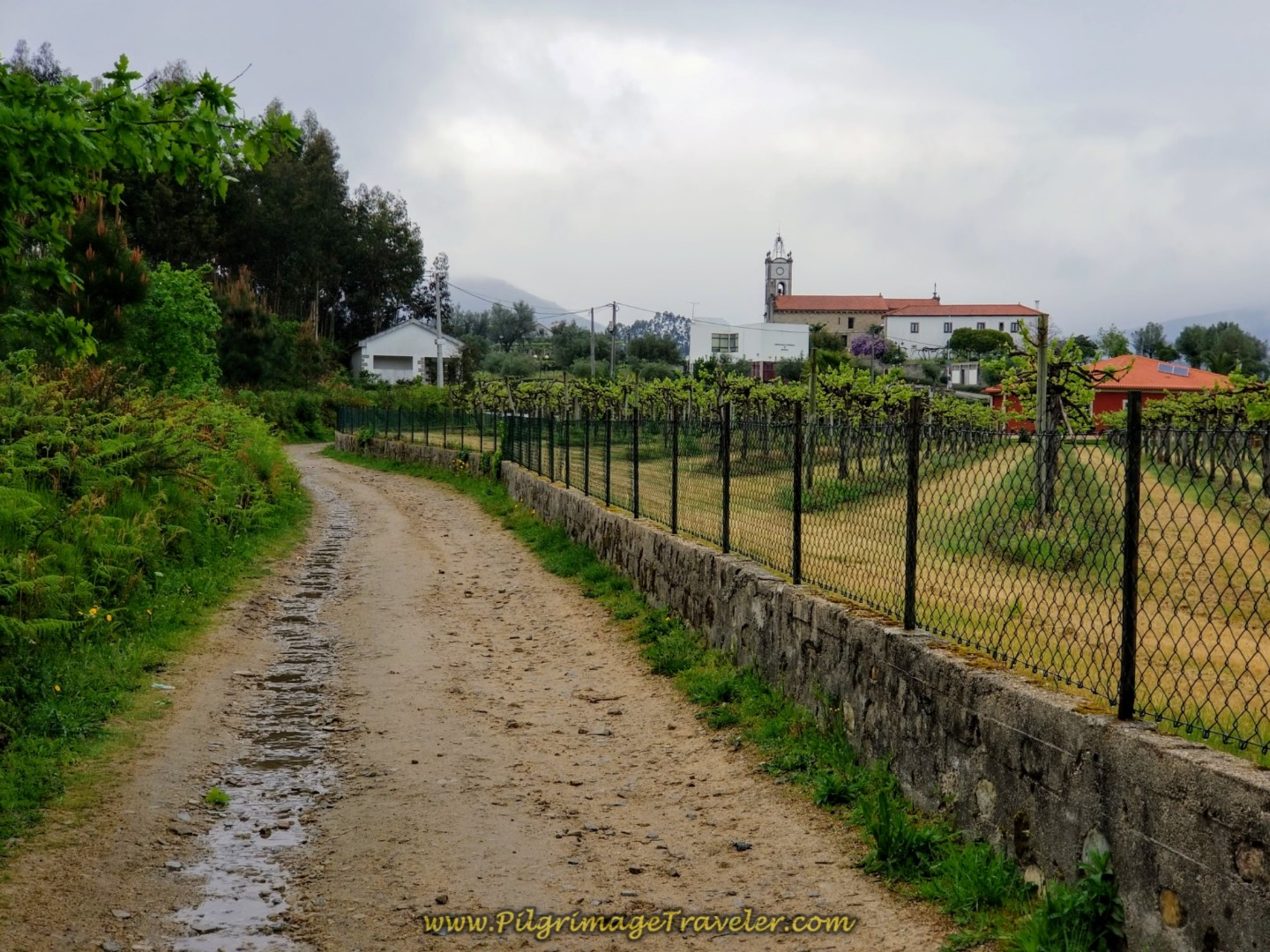 Entering Arcozelo, Day Eighteen, Central Route, Portuguese Camino