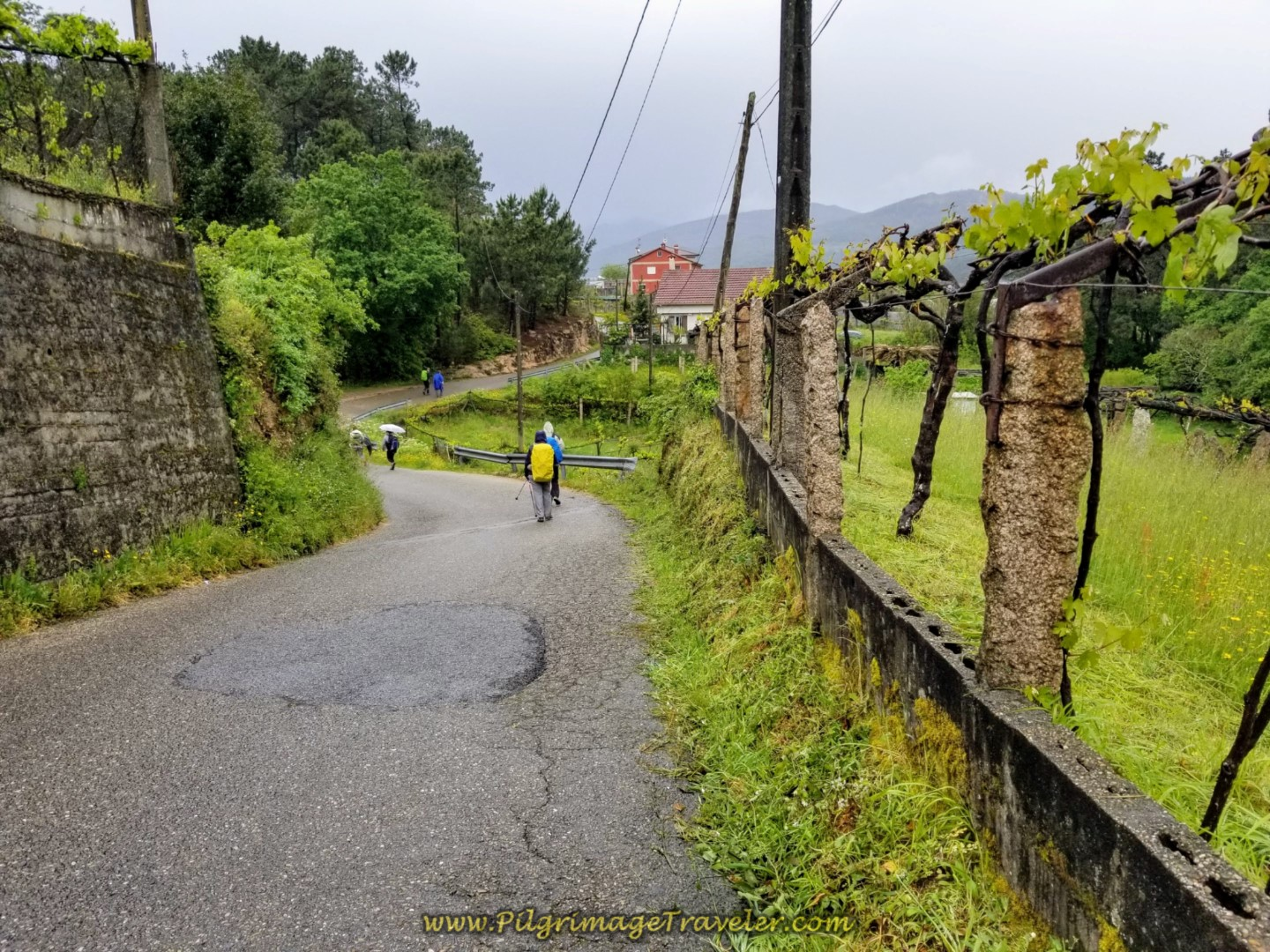 Nice downhill cruise on day twenty-one of the central route of the Portuguese Camino