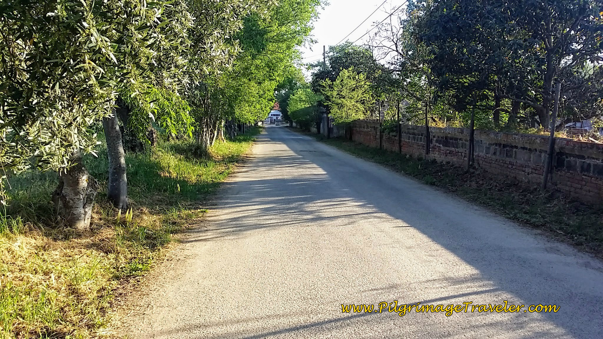 Approaching the Quinta da Cardiga on the Camino Portugués near São Caetano, Portugal