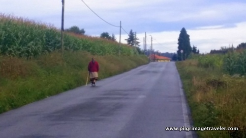 Old Woman on the Road, Camino Inglés, Spain