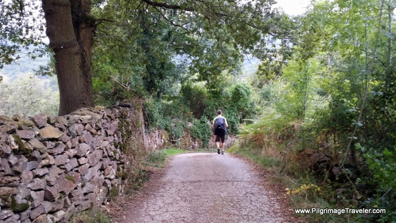Stone Wall and Country Lane to Euphoria on Day One, Camino Primitivo, Asturias, Spain