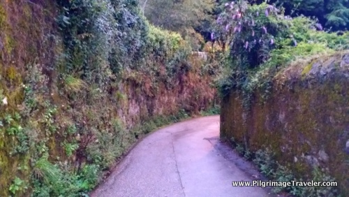 High-Walled Rural Road, Day One, Camino Finisterre