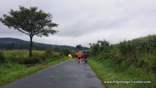 Rural road and many pilgrims on the Camino Finisterre