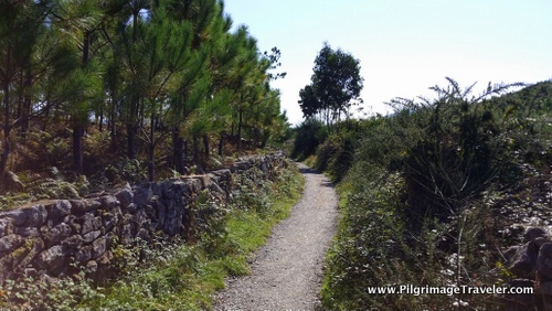 The Walled Peninsula Pathway Toward Estorde, Camino Finisterre