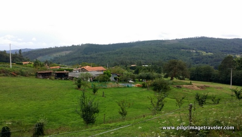 Country View, Camino Inglés, Spain