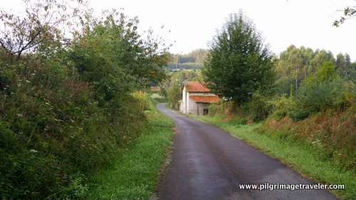 Country Road, Camino Inglés, Spain
