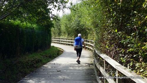 Boardwalk thru the Nature Preserve