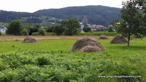 Haystacks on the Camino Inglés