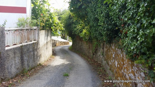 The Winding Walled Way
