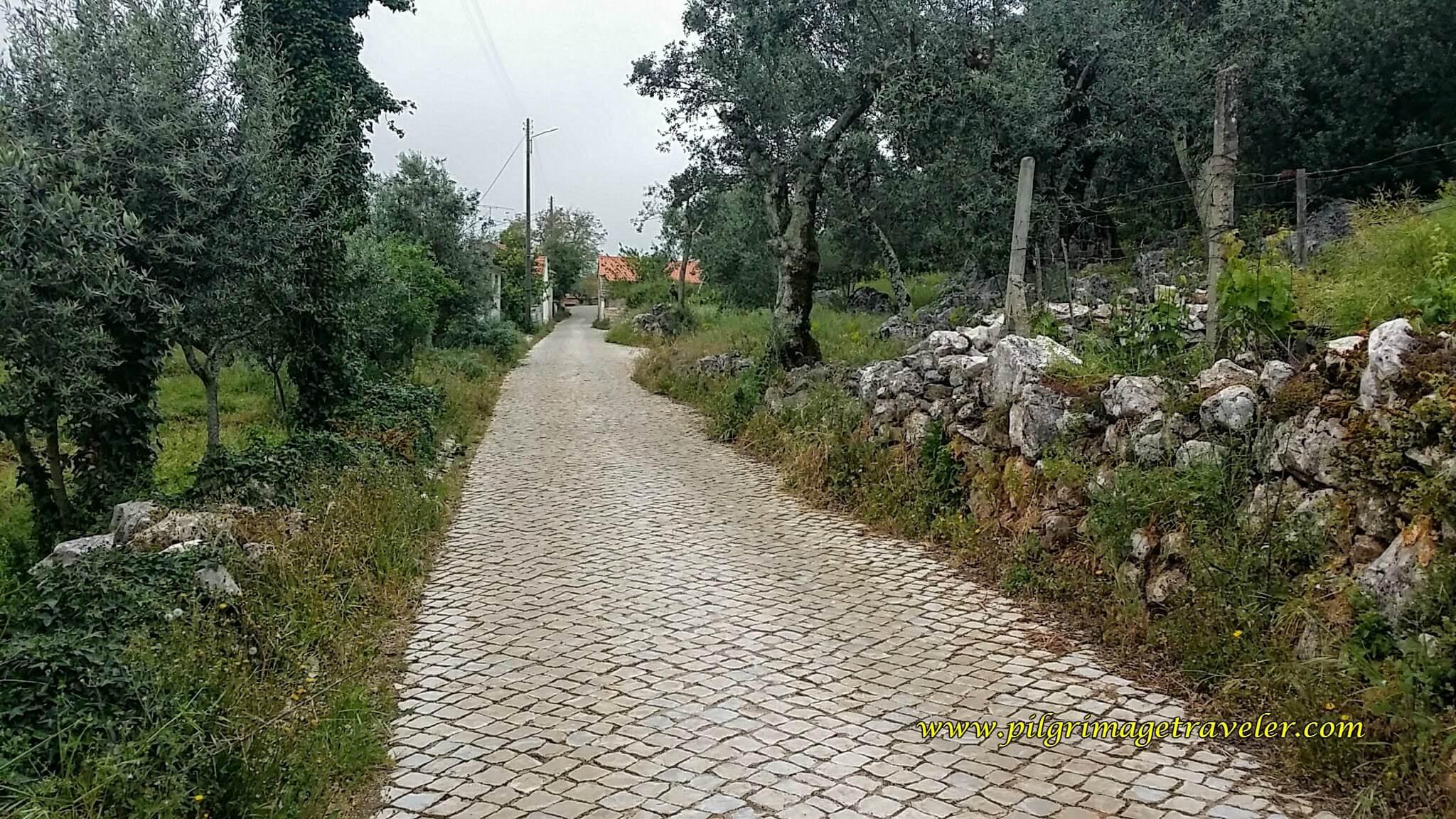 Cobblestone Country Road, Portugal