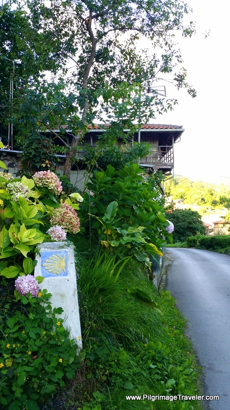 Asturian Horreo, Waymark and Hydrangea Bush along the Original Way