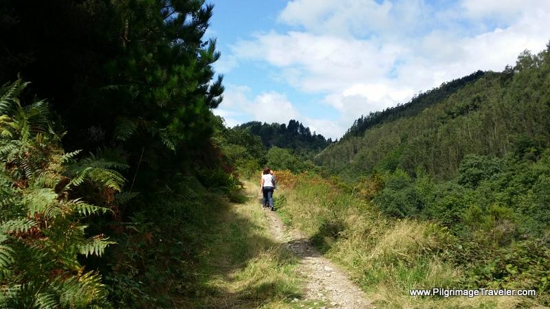 Camino Primitivo West of Salas, Asturias, Spain