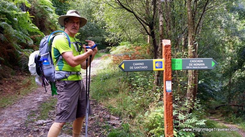 Camino de Santiago This Way!