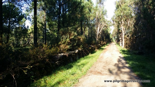 The Long Road on the Camino to Finisterre, Spain