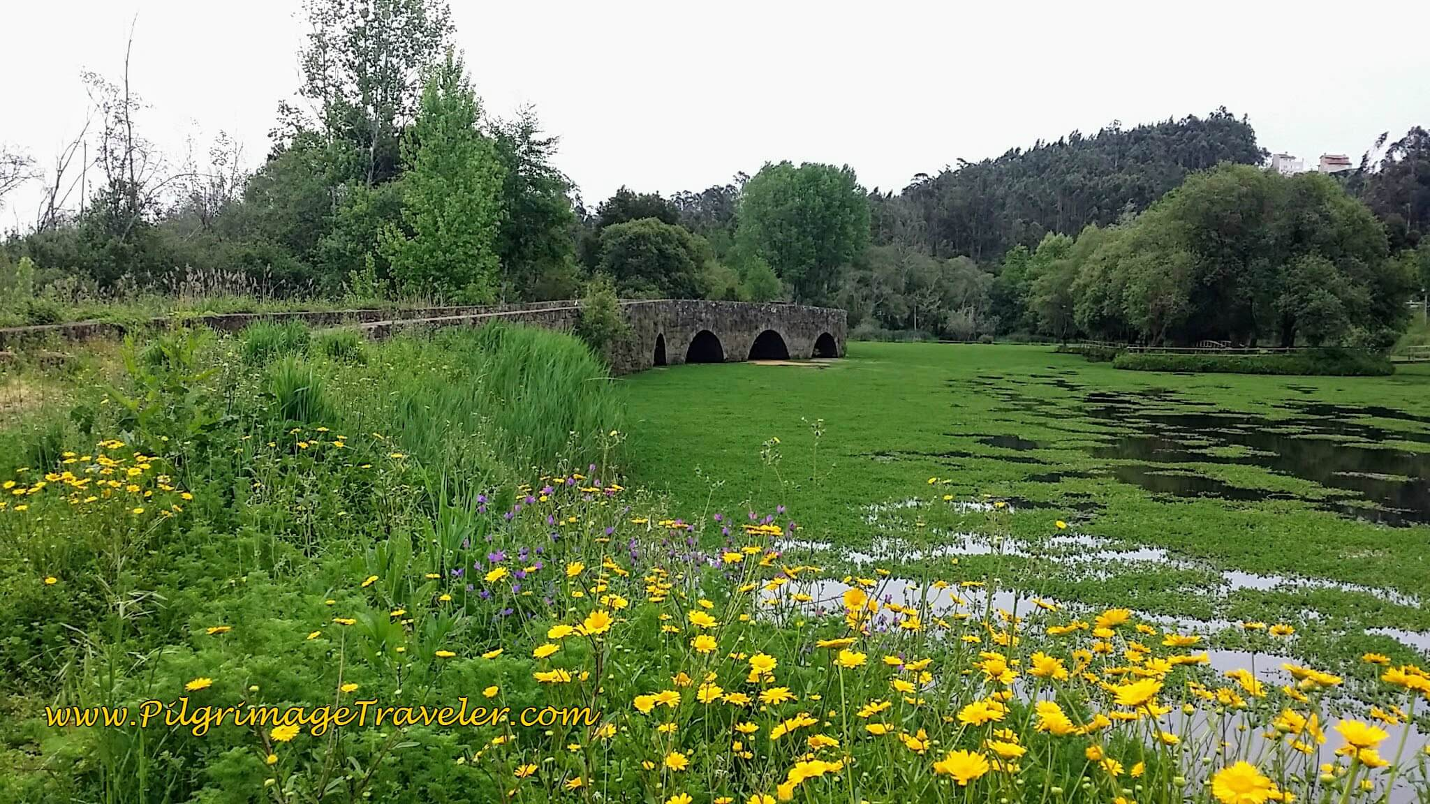 Old Roman Bridge, North of Agueda, Portugal