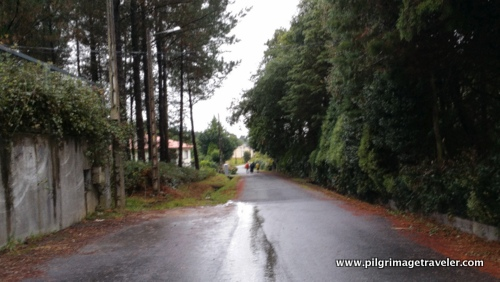 Early Rain on Day Five, Camino Inglés, Spain