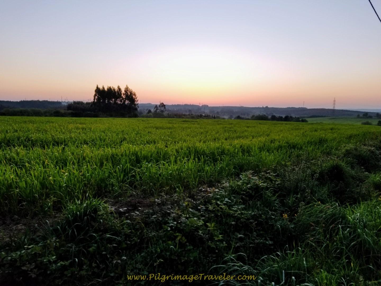 Sunrise Over Ó Mesón do Vento Countryside on day seven of the Camino Inglés