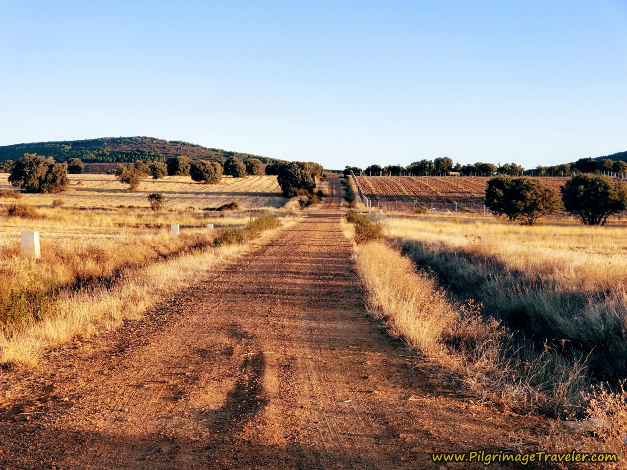Continuing Northward After Railroad tracks on the Camino Sanabrés from Tábara to Santa Marta de Tera