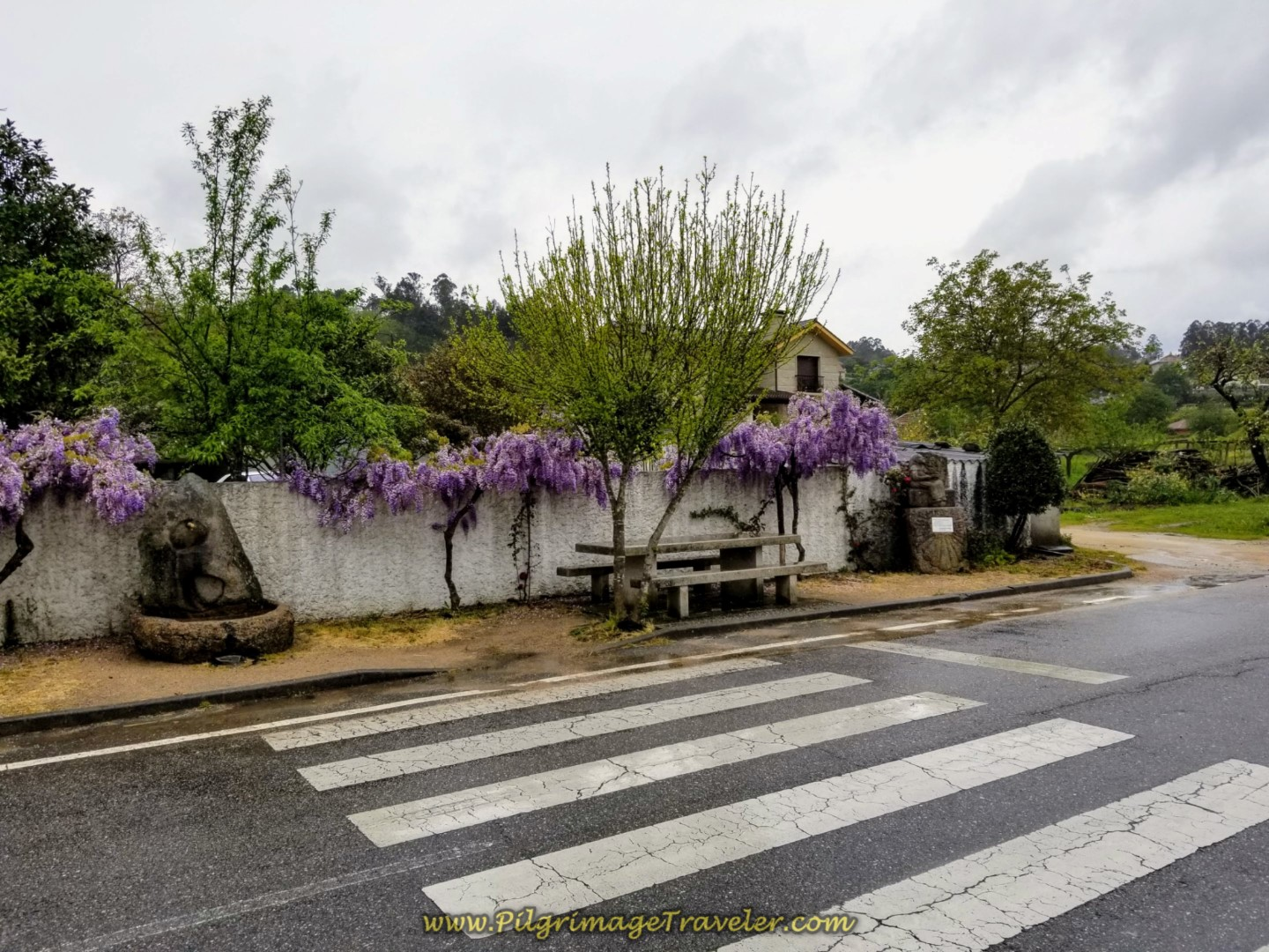 Beautiful Rest Stop in Mos on day twenty-one of the central route of the Portuguese Camino